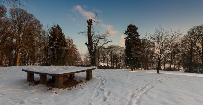 Ohrberg-Winter