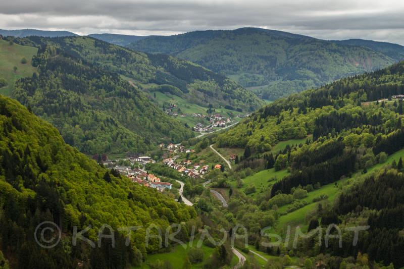 Schwarzwald 5