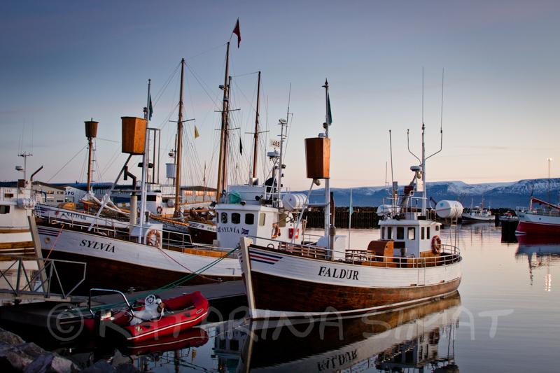 Walbeobachtungsboote in Húsavík